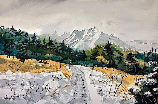 Chautauqua, Boulder by Ugljesa Janjic
