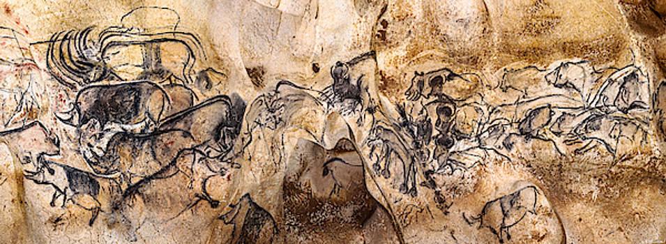 Weston Westmoreland - Chauvet Lions and Rhinos