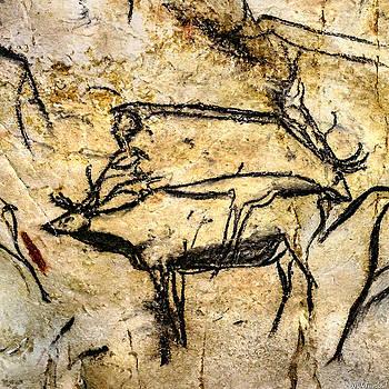 Weston Westmoreland - Chauvet Two Deer