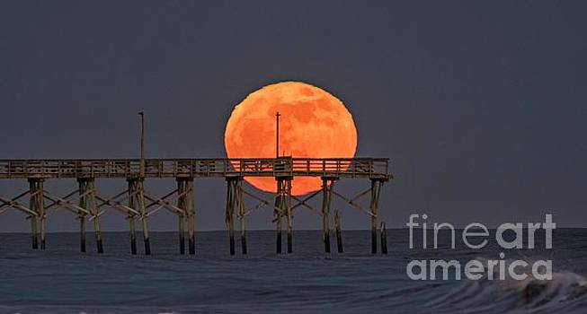 Cheddar Moon by DJA Images