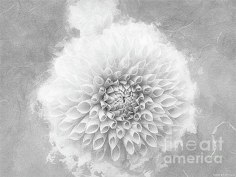 Cheery Dahlia Beauty BW by Mona Stut