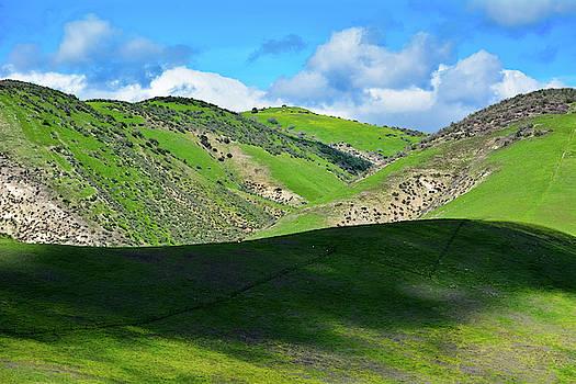 Cheeseboro Palo Comado Canyon Green Hills by Kyle Hanson