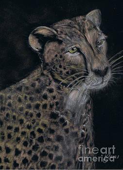Cheetah Portrait in Pastels by Karen Jane Jones