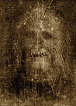 Andrea Gatti - Chewie Shroud