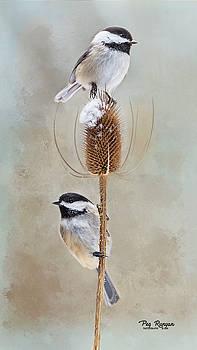 Chickadee Art by Peg Runyan