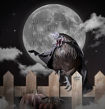 Chicken in Black Cape by Dorothy Roberts-Johnston