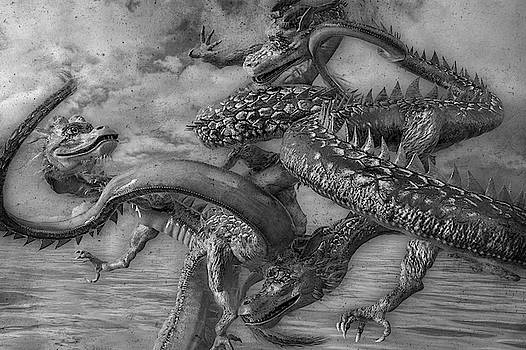 Chinese Dragons in Black and White by Betsy Knapp