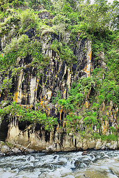 Chiriqui River Wall by Jackson Ball