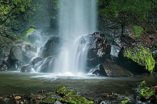 Chiriqui Waterfall Morning by Jackson Ball