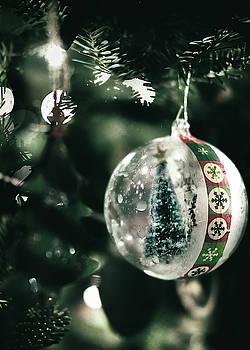 Christmas Captured by Scott Wyatt