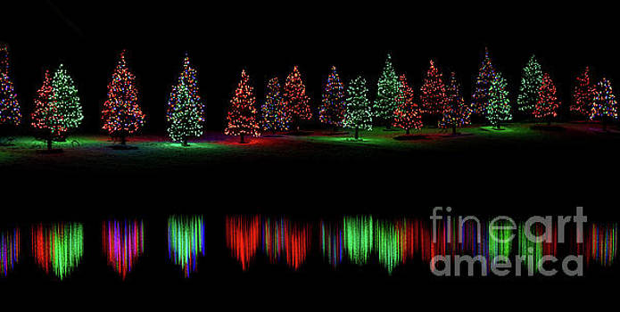 Christmas in Alaska Reflected Christmas Trees by Mike Reid