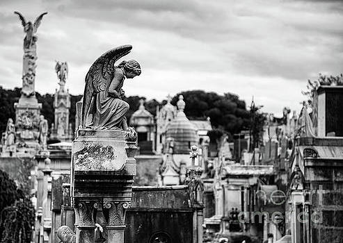 Wayne Moran - Cimitiere du Chateau Castle Cemetery Nice France BW