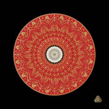 Circumplexical No 3971 by Alan Bennington