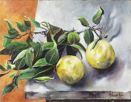 Citrus by Jolante Hesse