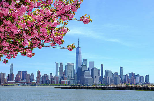 City Bloom by Len Tauro