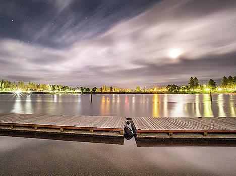 City Lights by Michele James