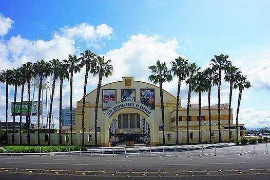 City National Grove Of Anaheim by Art Spectrum