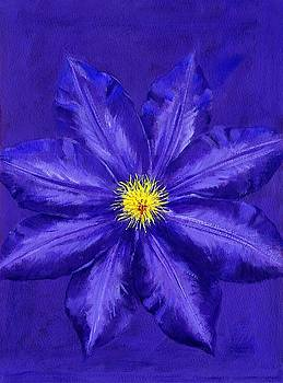 Clematis Wall Art by Brian James