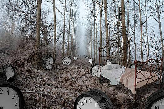 Clocks in a Dream by Roberto Agagliate