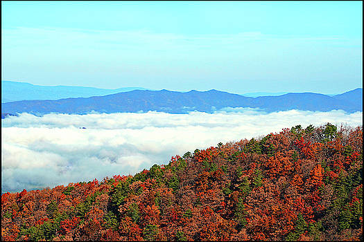 Clouds Over Fall Trees by Constance Lowery