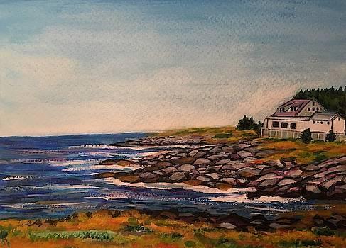 Coast of Monhegan Island, Maine  by Richard Nowak
