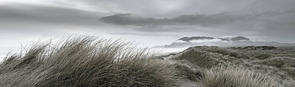 Coastal Dunes at Dusk by Don Schwartz
