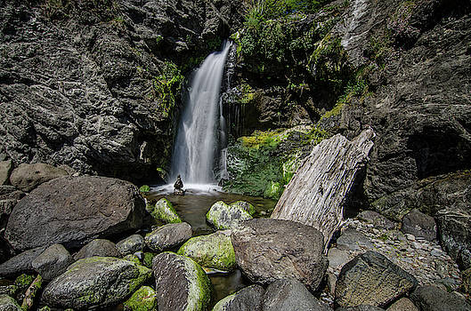 Margaret Pitcher - Coastal Falls