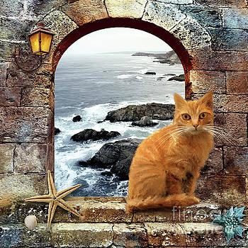 Coastal Guardian by Anne Vis
