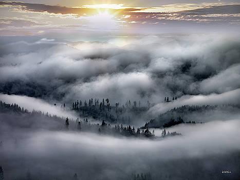 Coastal Range Ocean Fog by Leland D Howard