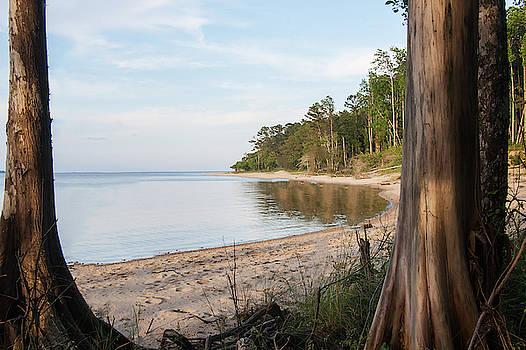 Coastal River Scene by Bob Decker