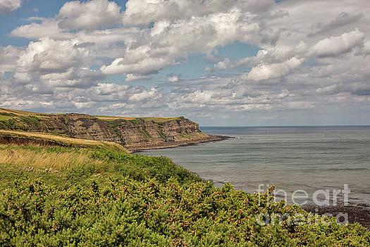 Patricia Hofmeester - Coastal view in Yorkshire