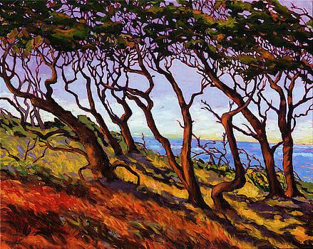 Coastal Winds by Rebecca Baldwin