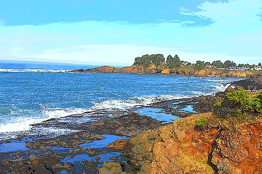 Coastline Dream  by Susan Voidets