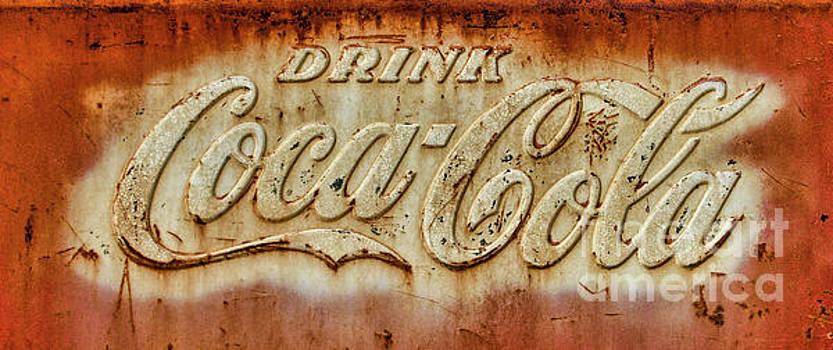 Coca-Cola by Diane LaPreta