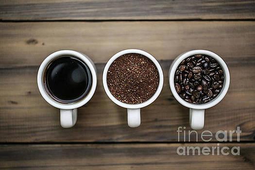Coffee Circle of Life by Eddie Hernandez