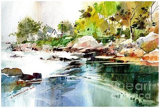 Cohasset Rapids by P Anthony Visco