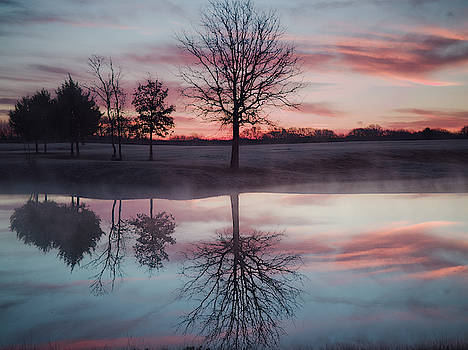 Cold and Glassy Pond by Philip A Swiderski Jr