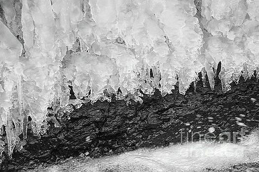 Cold and Wet by Karen Adams