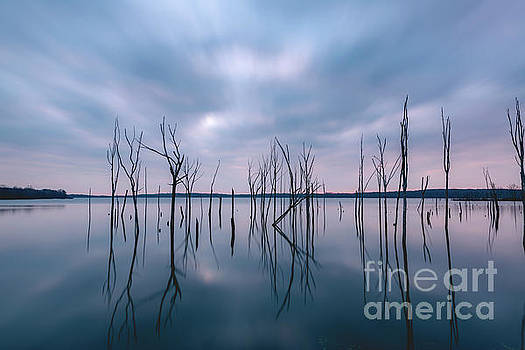Cold Reflections  by Michael Ver Sprill