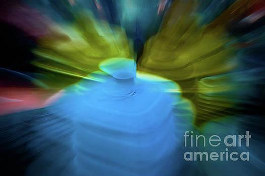 Color Zoom by Patti Schulze