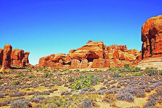 Colorado Arches Spires Red Rocks Scrub Blue Sky 3336 by David Frederick