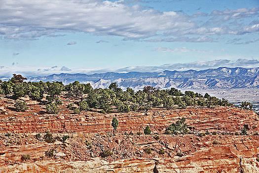 Colorado Blue sky Red Rocks Clouds Trees 2 10212018 2857 Colorado  by David Frederick