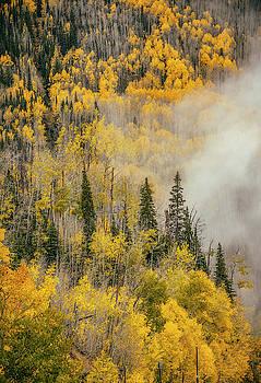 Colorado Colors by Marybeth Kiczenski