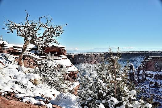 Colorado National Monument shot nine by Gerald Blaine
