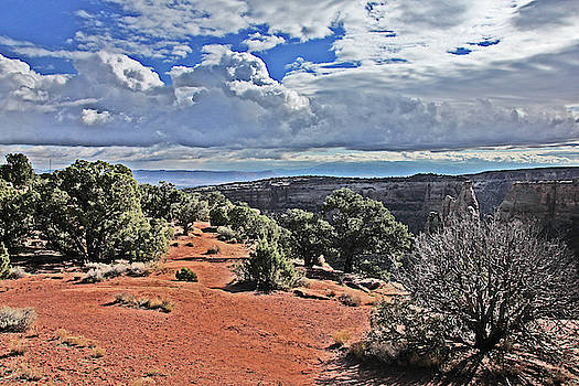 Colorado National Monument Trees rock formations clouds 3001 by David Frederick