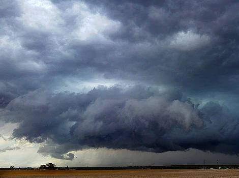 Colorado Storm  by Ally White