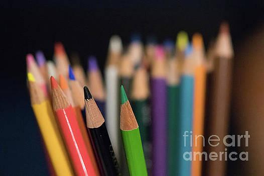 Colored Pencils by Nicki Hoffman