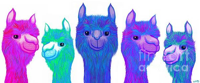 Colorful Alpacas by Nick Gustafson