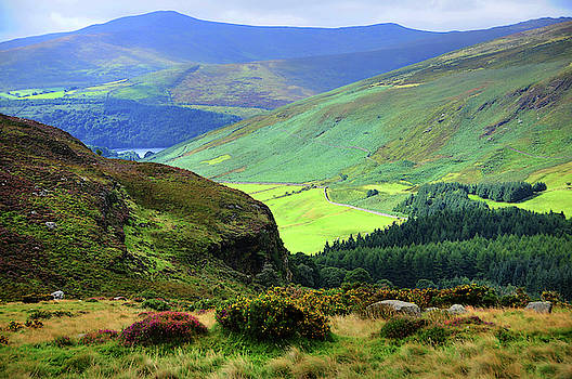 Jenny Rainbow - Colorful Autumn in Wicklow.  Green Hills