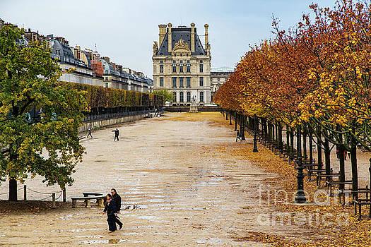 Wayne Moran - Colorful Autumn walk along the Champs Elysees